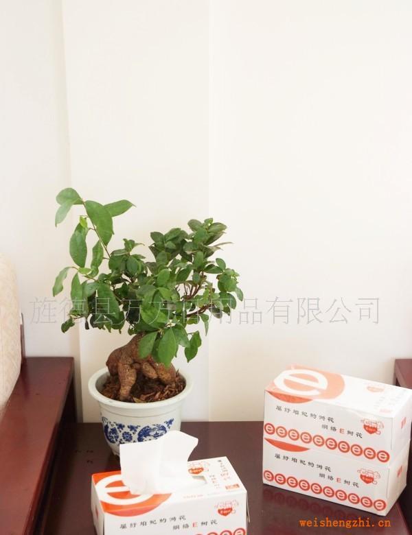 万方清霞享受生活原木浆超柔超韧盒纸