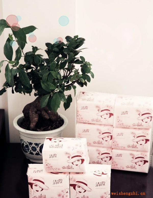 【纸巾厂家】常年供应生活用纸卫生纸餐巾纸厕纸卷筒纸