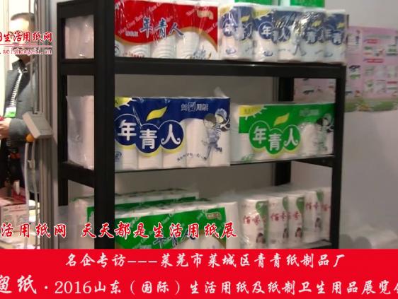 2016山东展会专访莱芜市莱城区青青纸制品厂黄总