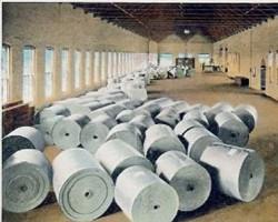 寻找造纸行业的可持续发展的可能性