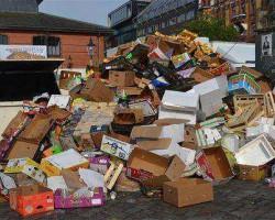 马来西亚港口发现1800吨非法倾倒的有毒洋垃圾